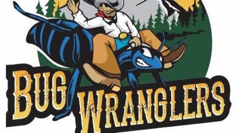 Bug Wranglers